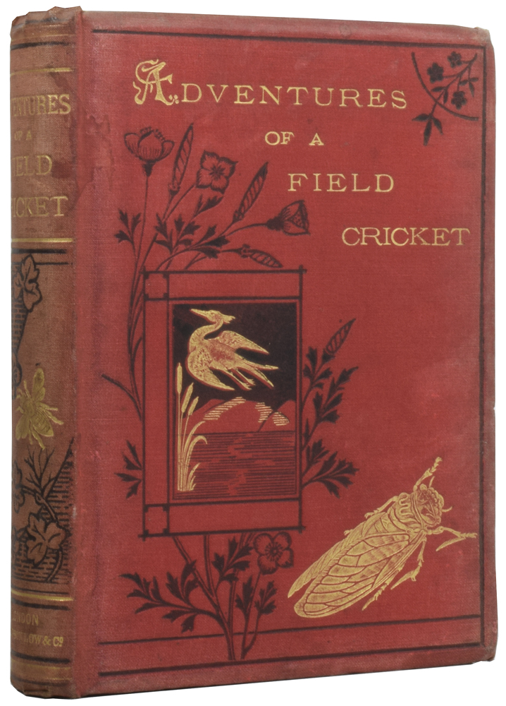 The Curious Adventures of a Field Cricket. Ernest CANDEZE, N. D'ANVERS, C. RENARD.