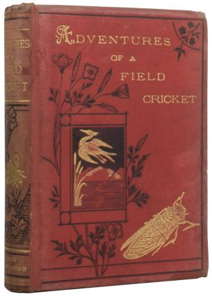 The Curious Adventures of a Field Cricket. Ernest CANDEZE, N. D'ANVERS, C. RENARD