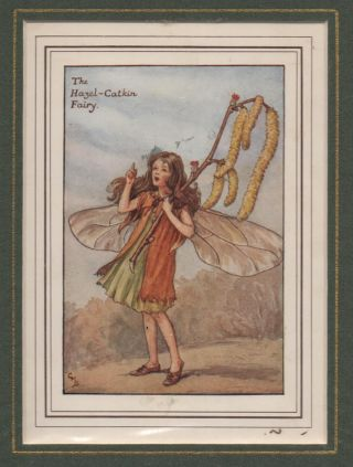 The Hazel-Catkin Fairy [Flower Fairies mounted colour plate]. Cicely Mary BARKER