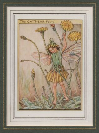 The Cat's-Ear Fairy [Flower Fairies mounted colour plate]. Cicely Mary BARKER