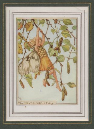 The Silver Birch Fairy [Flower Fairies mounted colour plate]. Cicely Mary BARKER