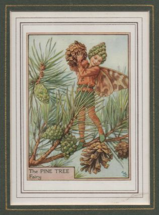 The Pine Tree Fairy [Flower Fairies mounted colour plate]. Cicely Mary BARKER
