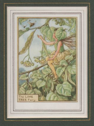 The Lime Tree Fairy [Flower Fairies mounted colour plate]. Cicely Mary BARKER