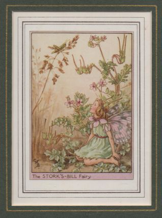 The Stork's-Bill Fairy [Flower Fairies mounted colour plate]. Cicely Mary BARKER
